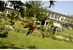 University of Hertfordshire Hatfield United Kingdom Photo