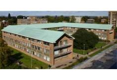 University of Reading, School of History