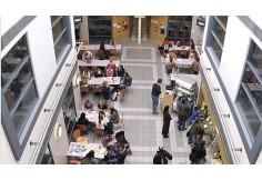 University of Teesside, School of History